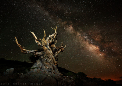 Milky Way xsm5D3_6482_DxO_bristlecone milky way copy